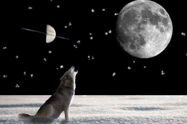 como-nos-afecta-la-luna-llena5