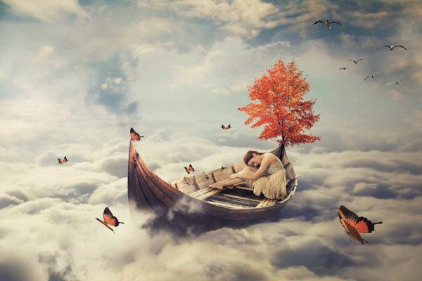 Qué significa soñar con insectos