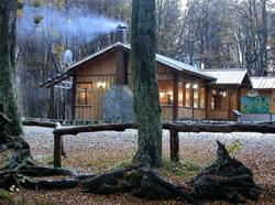 Cabaña cálida y confortable
