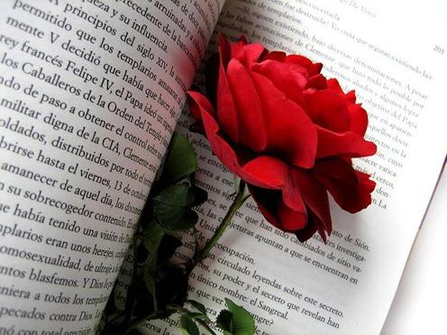 una rosa y un libro por san jorge